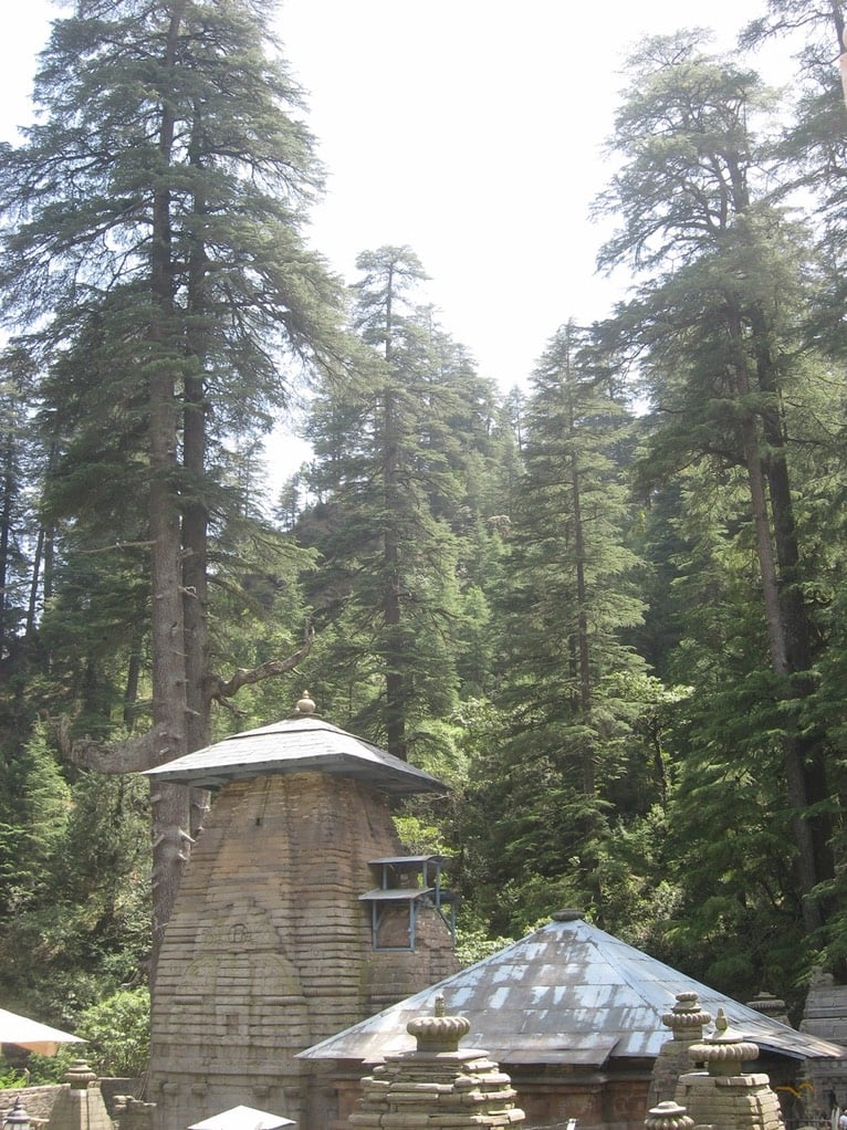 The temple of Jageshwar surrounded by cedars.